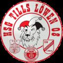HSG Tills Löwen